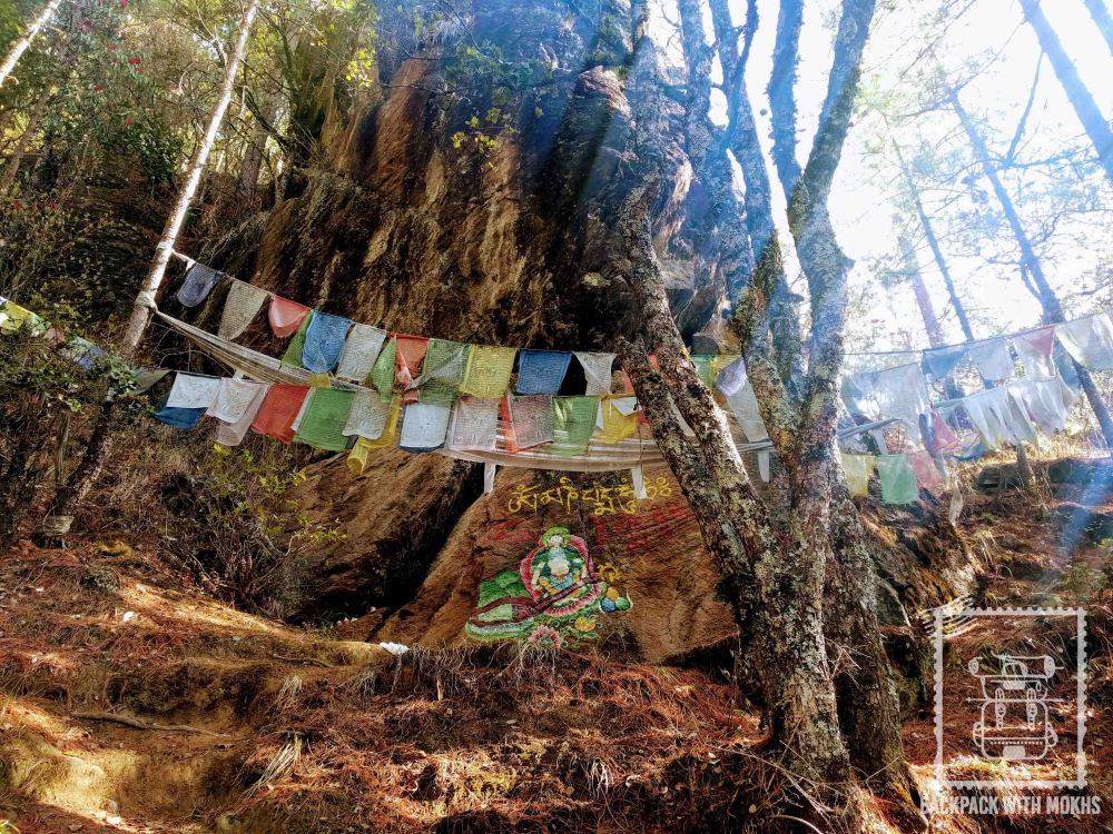 Prayer flags hanging in the forest