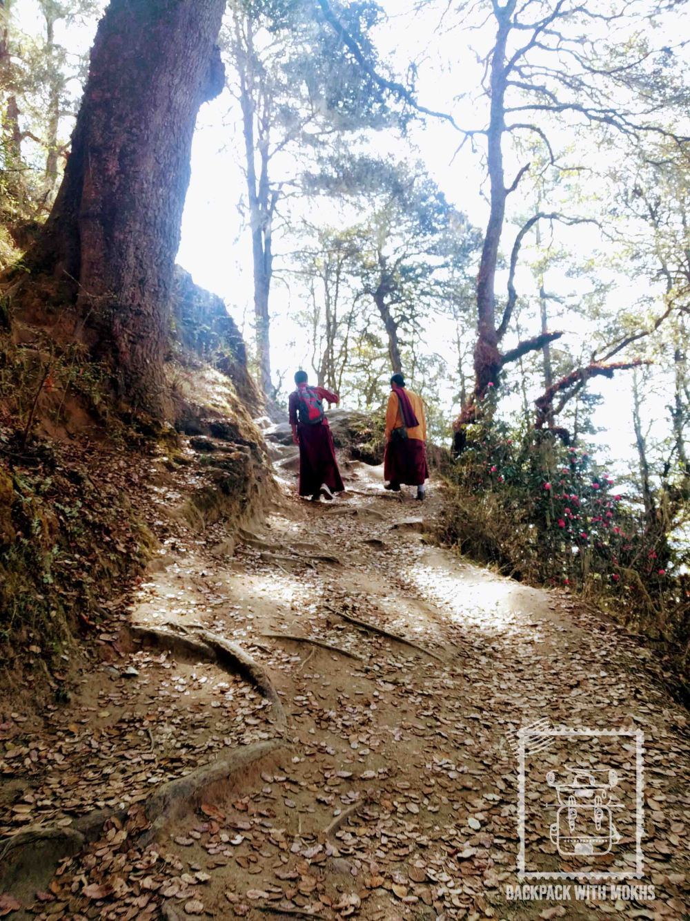 Monks on their pilgrimage