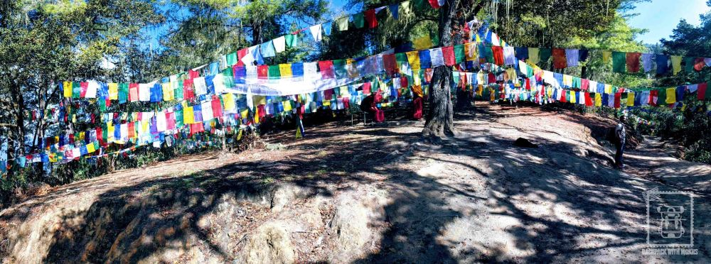 Prayer flags hanging in the countryside