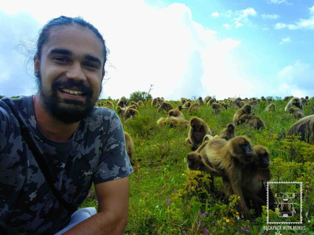 sitting amongst Gelada Baboons